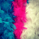 Colorful feather boa Stock Photos