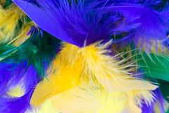 Colorful feather boa for the Mardi Gras Festival. Close up image of a colorful feather boa for the Mardi Gras Festival with emphasis on vibrant purple and royalty free stock photo