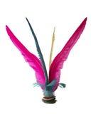 Colorful Feather Chinese Jianzi Kicking on white Stock Photos