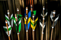 Colorful feathers of the arrow in the quiver which cost. Close-up royalty free stock images