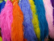 Colorful feathers - blue, pink, orange, yellow and purple. Colorful blue, pink, orange, yellow and purple feathers background stock photography