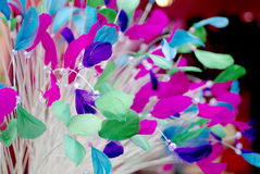 Colorful feathers fashion background Stock Images