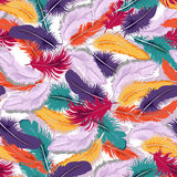 Colorful feathers seamless Royalty Free Stock Photography