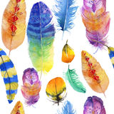 Colorful feathers. Seamless background with watercolor feathers on white Royalty Free Stock Image