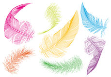 Colorful feathers, vector set Royalty Free Stock Photography