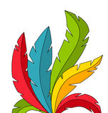 Colorful Feathers on White Background Royalty Free Stock Images