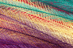 Colorful feathery  background. A bright colorful  background of feathery textured material Stock Photo