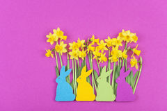 Colorful felt Easter bunnies in front of daffodils Stock Images