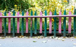 Colorful fence with beautiful plant background Royalty Free Stock Image