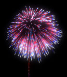 Colorful festive fireworks at night. Over black background Stock Photos