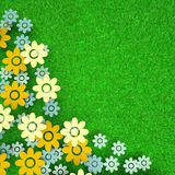 Colorful field with flowers on green grass. Background Royalty Free Stock Photos