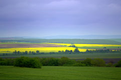 Colorful fields landscape Royalty Free Stock Photography