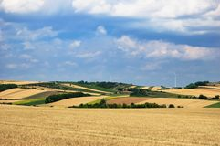 Colorful fields under cloudy sky Royalty Free Stock Photo