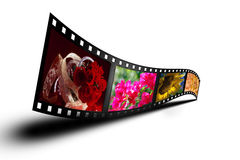 Colorful Filmstrip with Shadow White Stock Photo