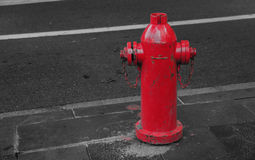 Colorful Fire Hydrant royalty free stock image