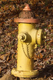 Colorful Fire Hydrant Close Up Stock Photography