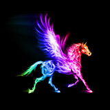 Colorful fire Pegasus. Fire Pegasus in spectrum colors on black background Stock Photo