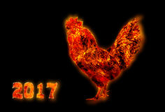 Colorful Fire rooster. symbol of the Chinese New Year. Fire bird, red cock. Happy New Year 2017 card.  Royalty Free Stock Images