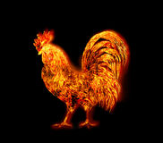 Colorful Fire rooster. symbol of the Chinese New Year. Fire bird, red cock. Happy New Year 2017 card Stock Photo