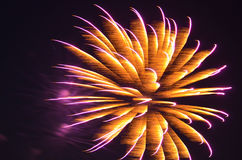 Colorful Fire in the Sky. Bursting orange and purple fireworks in the sky Stock Photo
