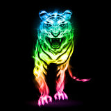 Colorful fire tiger. Fire tiger in spectrum colors  on black background Stock Images
