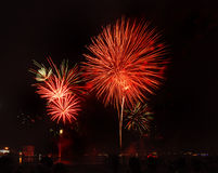 Colorful  Firework display Royalty Free Stock Photo