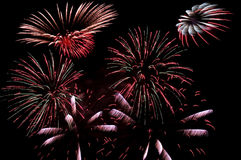 Colorful firework explosion Stock Photo