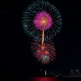 Colorful firework festival in celebration Stock Images