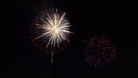Colorful firework Royalty Free Stock Photography