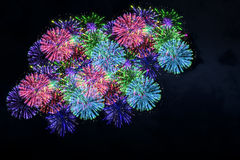 Colorful firework on midnight blue sky Stock Images