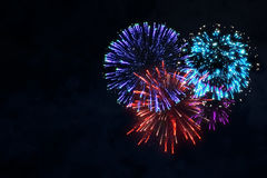 Colorful firework on midnight blue sky Royalty Free Stock Photo