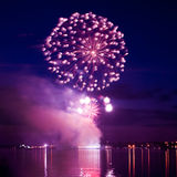 Colorful firework in a night sky royalty free stock photography