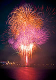 Colorful firework in a night sky Stock Image