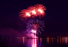 Colorful firework in a night sky stock images