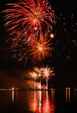 Colorful firework in a night sky Royalty Free Stock Photos