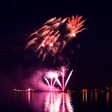 Colorful firework in a night sky Royalty Free Stock Images