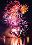 Beautiful  firework in a night sky Royalty Free Stock Photos