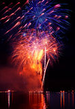 Colorful firework in a night sky stock photo