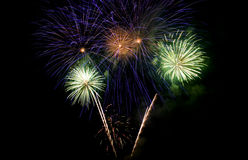 Colorful firework show Stock Photography
