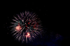 Colorful firework Royalty Free Stock Images