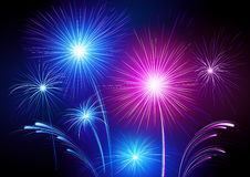 Colorful fireworks. Colorful neon fireworks exploding in black sky Royalty Free Stock Photos