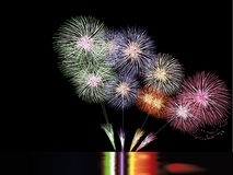 Colorful fireworks. On the black sky background Royalty Free Stock Images