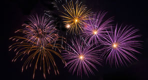 Colorful fireworks Royalty Free Stock Photo