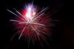 Colorful fireworks against black sky Royalty Free Stock Photography