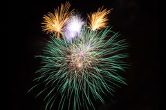 Colorful fireworks against black sky Royalty Free Stock Image