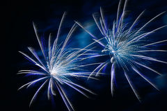Colorful fireworks for background royalty free stock images