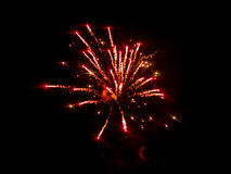 Colorful fireworks beautiful Royalty Free Stock Image