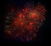 Colorful fireworks on black background. Holiday light. Royalty Free Stock Image