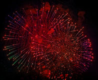 Colorful fireworks on black background. Holiday light. Stock Image