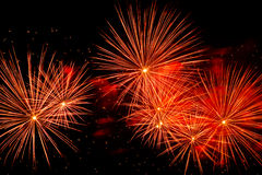 Colorful fireworks on the black sky Royalty Free Stock Images